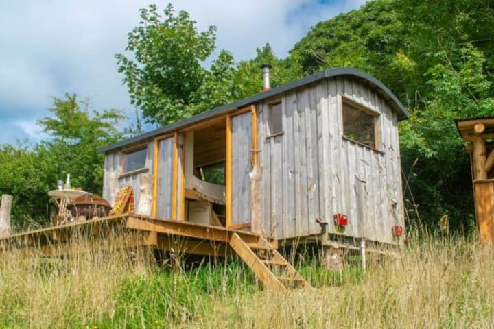 Hutty, off-grid tiny house cabin in Pembrokeshire