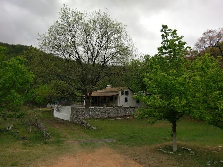 Rincon del Lobo Cabin