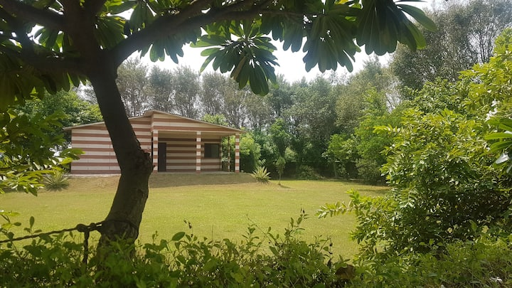Farm Amidst Nature for a Peaceful Stay