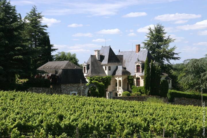 'Petit Louet', Manoir de la Groye, Loire Valley