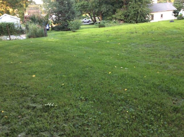 Open spacious backyard on 1/3 acre lot.