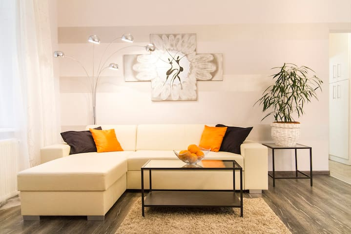 Spacious flat in a downtown walking street