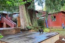 Custom built redwood deck