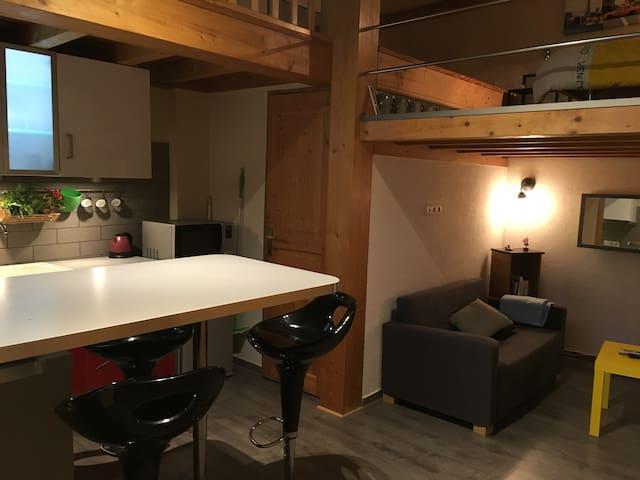 Logement au coeur d'Aix les Bains - Aix-les-Bains - Apartament