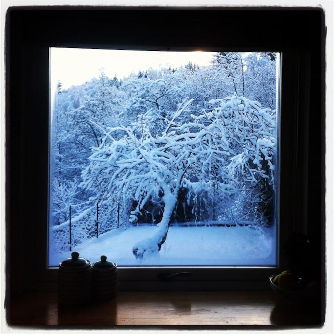 Winter-view from Kitchen window