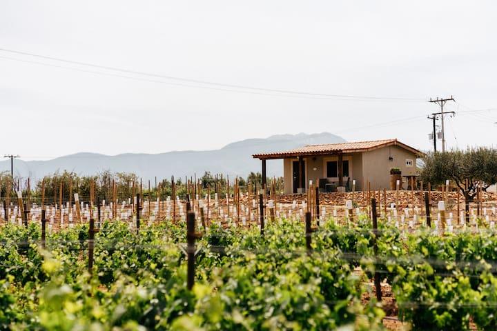 Rancho Los Retonos - Villa Capri