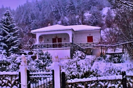 Family-friendly home at 1100 m next to firs - Gardiki