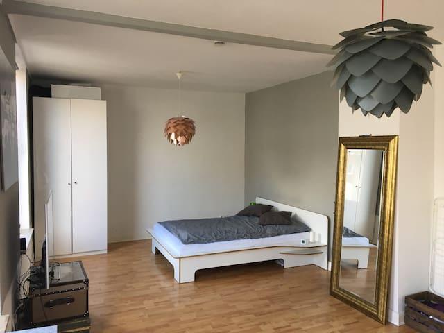 Sehr gemütliche Einzimmerwohnung super gelegen