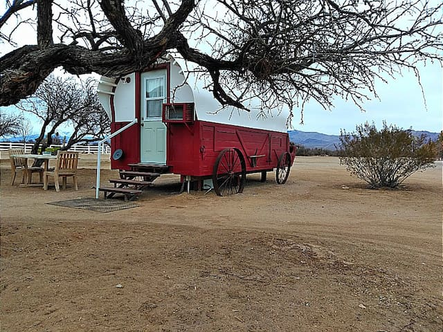 Covered Wagon /Near Las Vegas on Dude Ranch