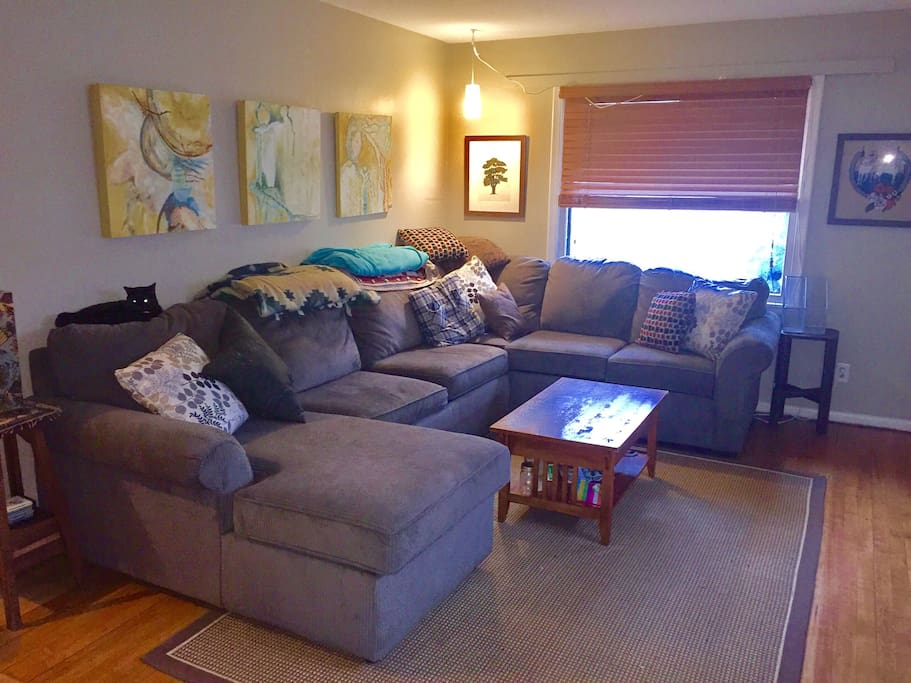 Huge sectional, very comfy!