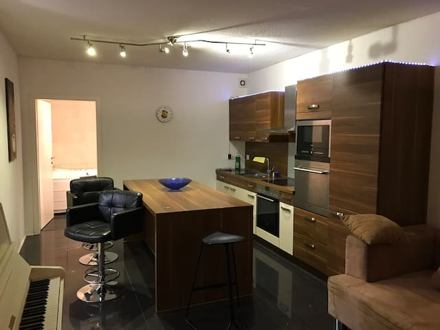 deluxe 3-room apartment in the center of Munich