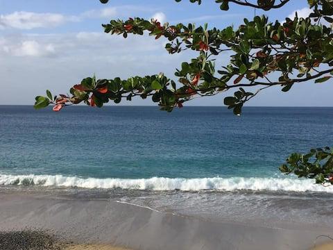 Condo Tobago -  no available bookings until 2021