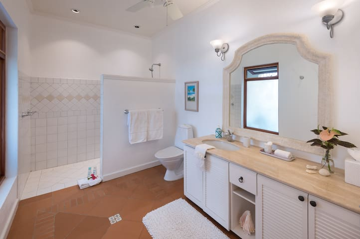 Hibiscus ensuite Bathroom shower is designed to be fully handicapped accessible as it is on same floor level with  no step or ledge.