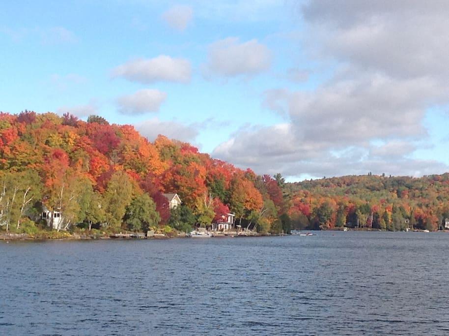 couleurs spectaculaires de l'automne au lac