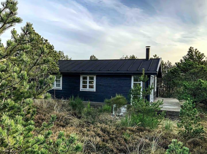 Hyggeligt sommerhus på skøn naturgrund  Klitmøller
