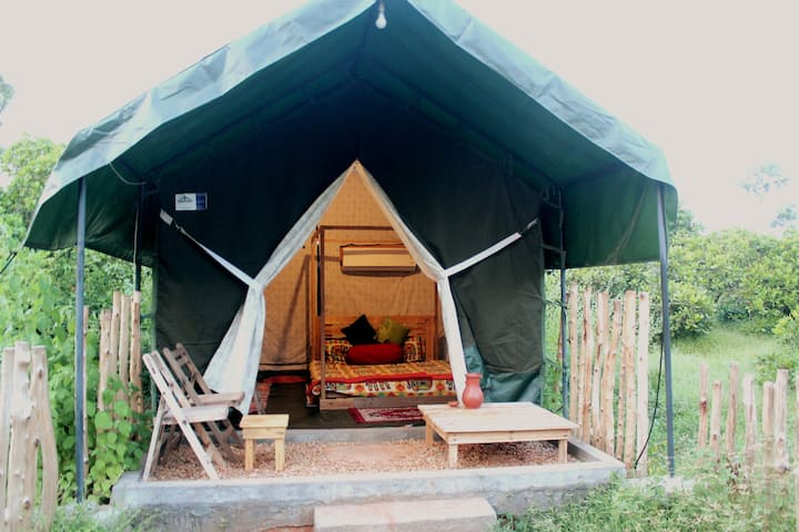Luxurious Swiss Tent on Cashew farm