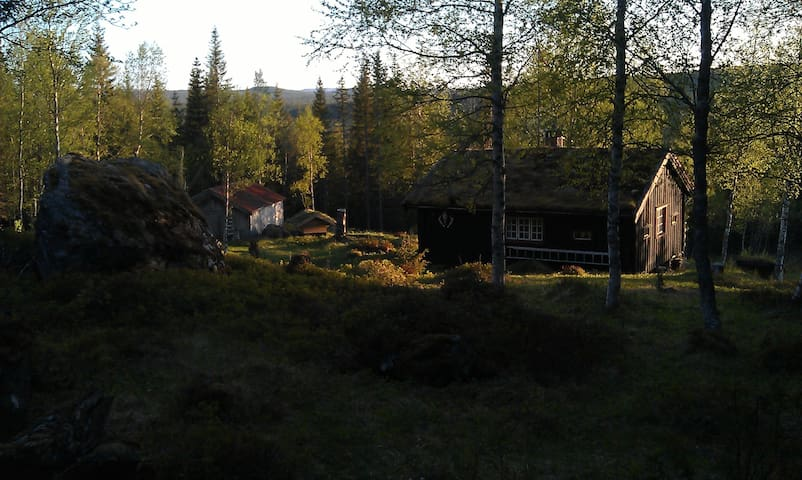 Backside of cabin in the evening