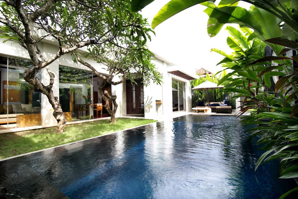 Horizon swimming pool - Villa wraps around pool with shade and scent from Frangipani trees