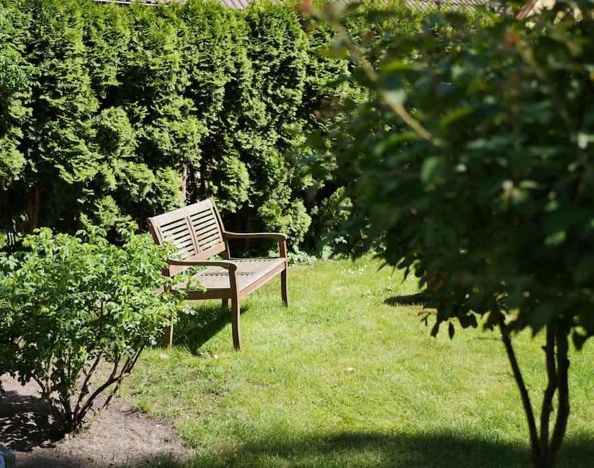 sonniges Plätzchen im Garten