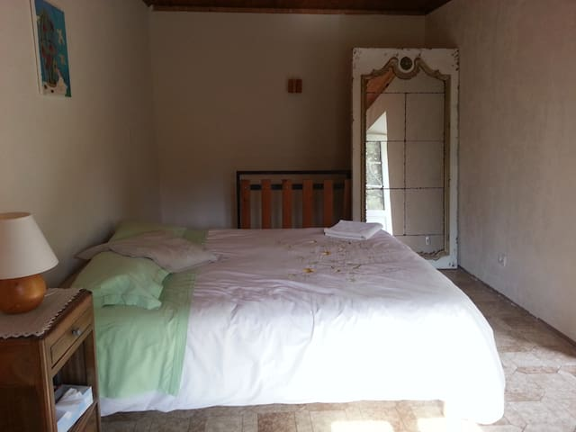 Large bedroom with a king size bed - Saint-Julien-Mont-Denis - House