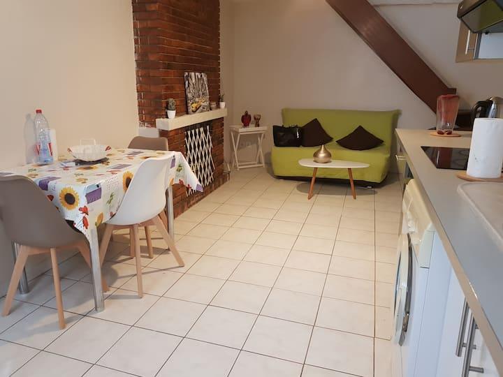 Maison en bord de Loire avec cour 44  M2