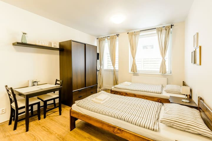 Hotel-like studio in the center of Prague for you
