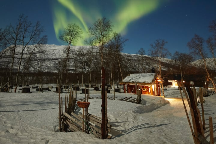 Wanny Woldstad Cabin at Bardu Huskylodge