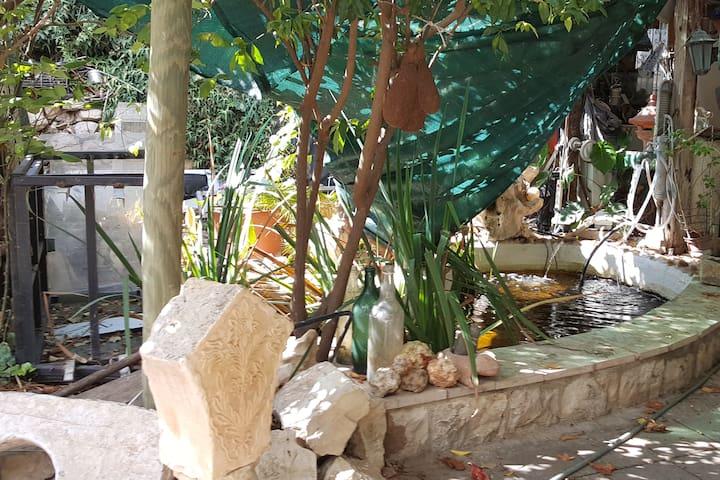 Menucha's Home,old city Tzfat, Lech Lecha Suites