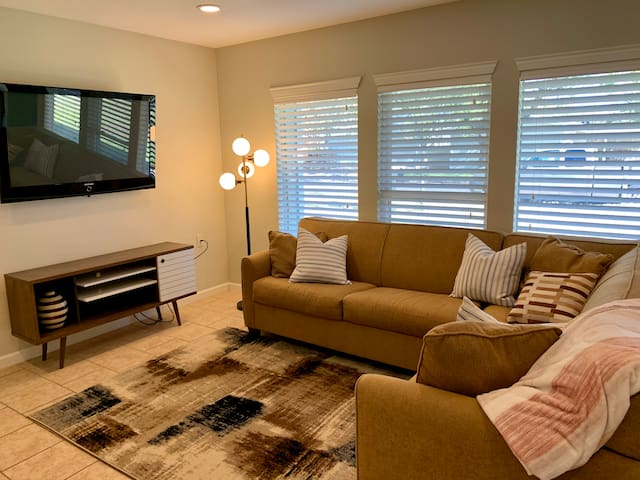 Living Room w/ pull out sofa