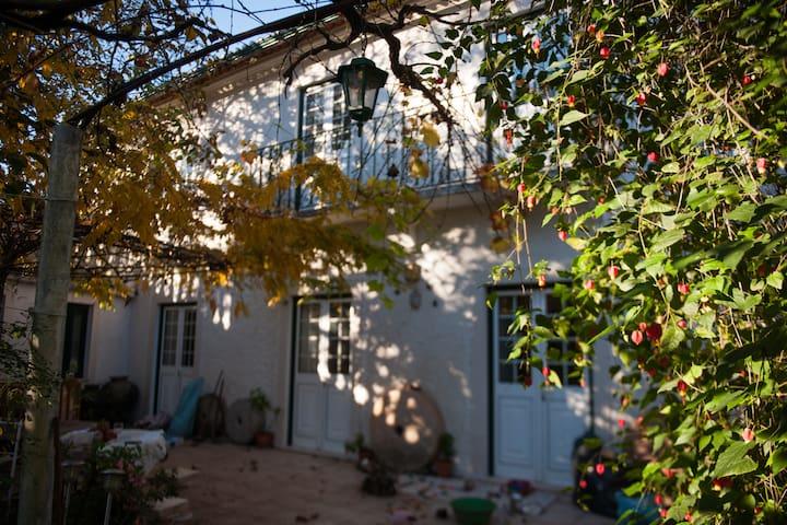 Walnut Farm S2 - Vila Nova de Monsarros - Guesthouse