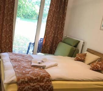NEU-renovierte und möblierte 1-Z. Wohnung in Mainz