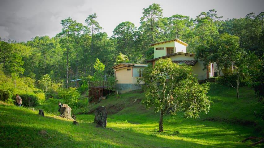 Cabaña/Suite en la zona bella de Valle de Ángeles.