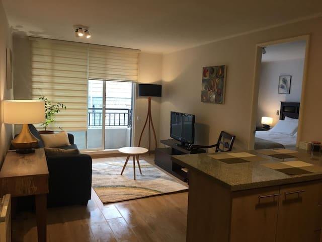 M&D Apartment Nr.3 in Puerto Varas