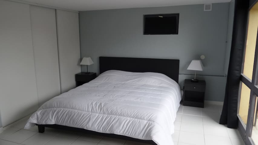 CHAMBRE PROCHE SITE DE L'EURO - Saint-Cyprien - Wohnung