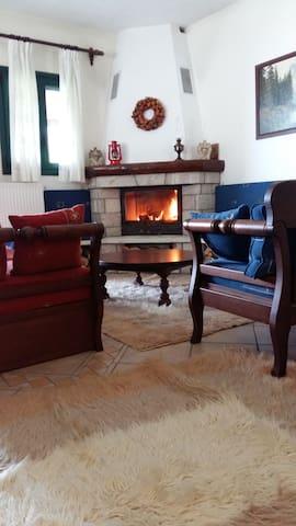 Άνετο, ζεστό σπίτι στον Πολύδροσο Παρνασσού. - Polidrosos - Talo
