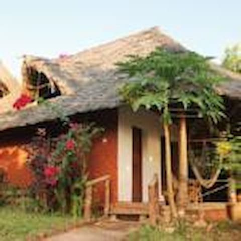 Mbwe roots bungalows - Nungwi - Bungalov