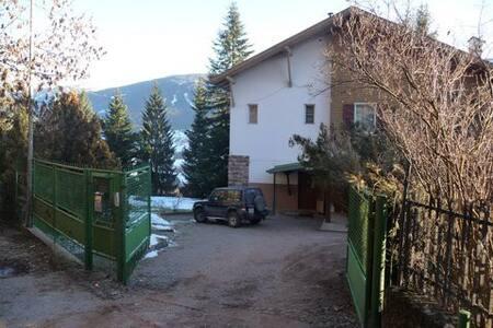 Villa Busser - Cavalese - วิลล่า