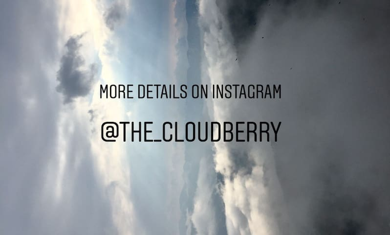 Check out the Insta page for more awesomeness