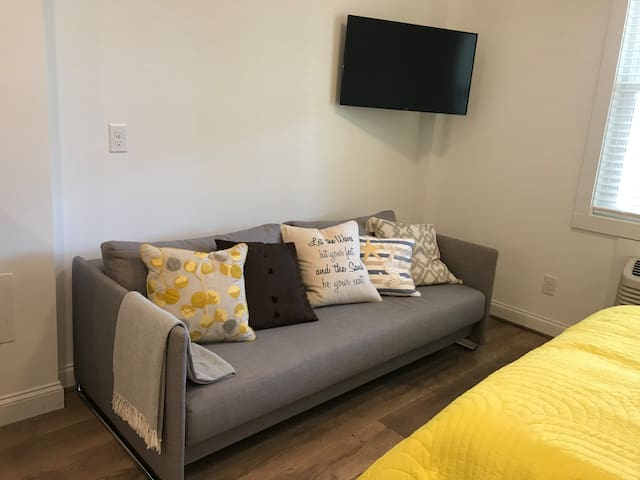 Very comfortable sofa pulls out into a true full-size bed.