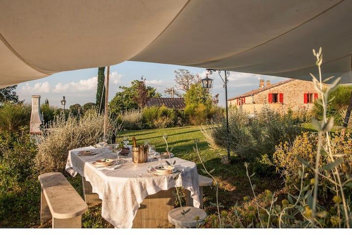 Schönes Ferienhaus in Civitella Paganico mit Pool