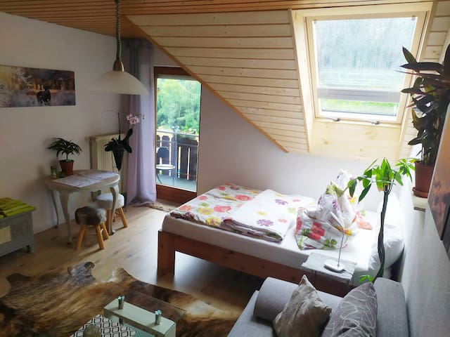 Nice Room Titisee-Neustadt with Black Forest view