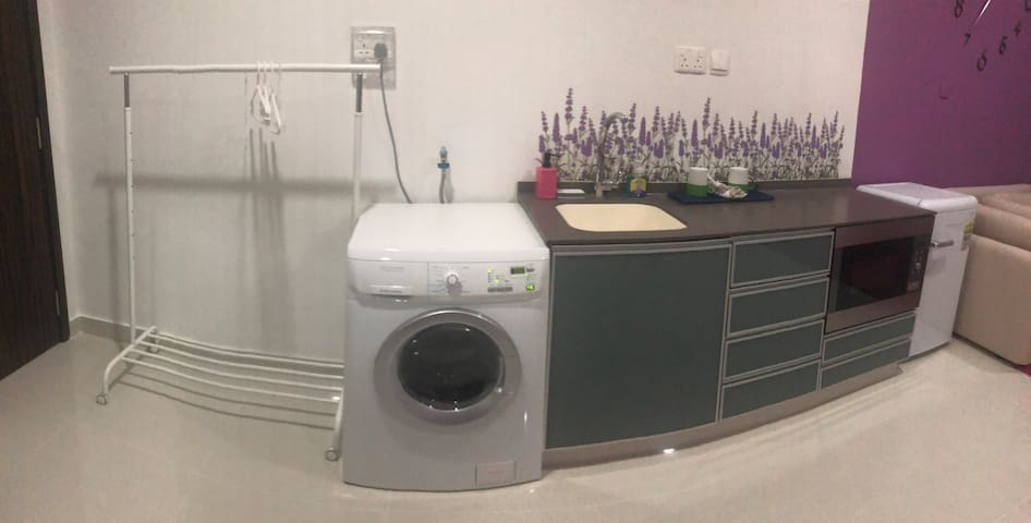 Washing machine cum dryer, kitchenette with microwave and wash basin, clothes rack