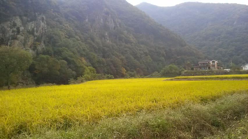 계룡산의 별장형 독채 펜션 정담 - Banpo-myeon, Gongju - House