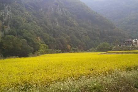 계룡산의 별장형 독채 펜션 정담 - Banpo-myeon, Gongju - Rumah