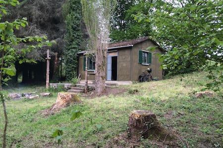 Remote off-grid cabin - Virey - Haus