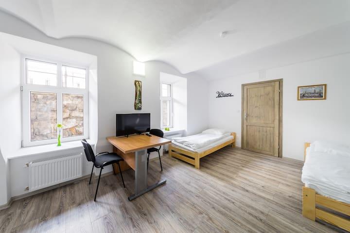Apartament Lubicz 10C/BAS5 WAWELOFTS
