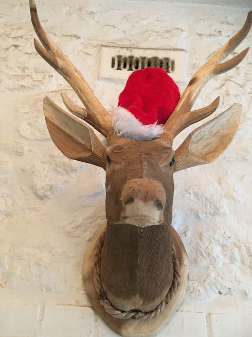 Our stag becomes Rudolph at Christmas.