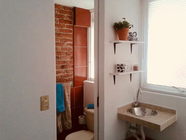 Private Micro Studio near Coyoacán
