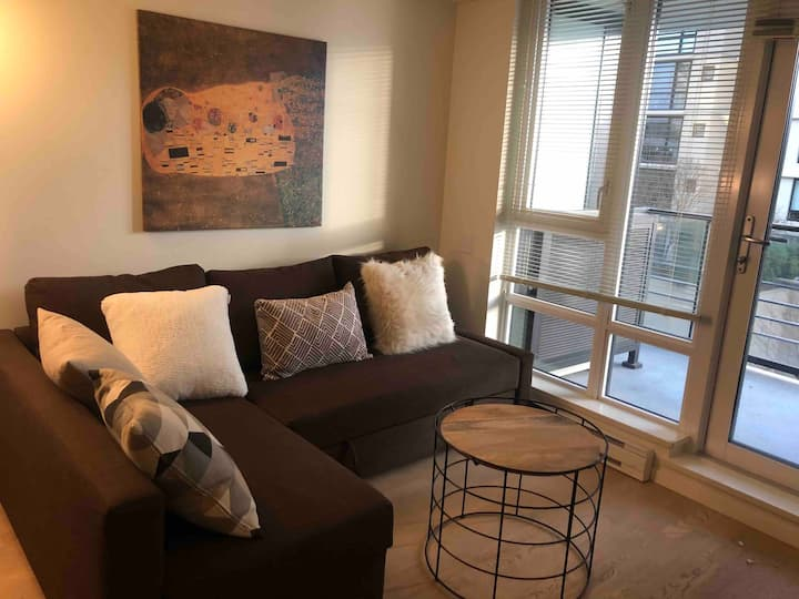 Richmond downtown 1 bedroom