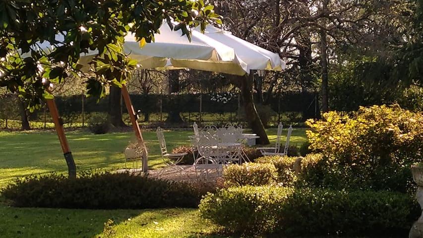 particolare giardino, colazione, Villa Zane, Villa Veneta b&b con piscina parcheggio privato, Treviso, Venezia, Veneto